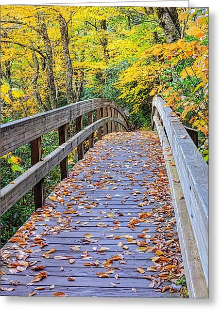 Coaxing - Autumn Bridge Greeting Card by Carol VanDyke