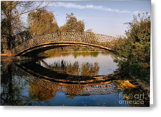 Autumn Bridge In Romania Greeting Card by Daliana Pacuraru