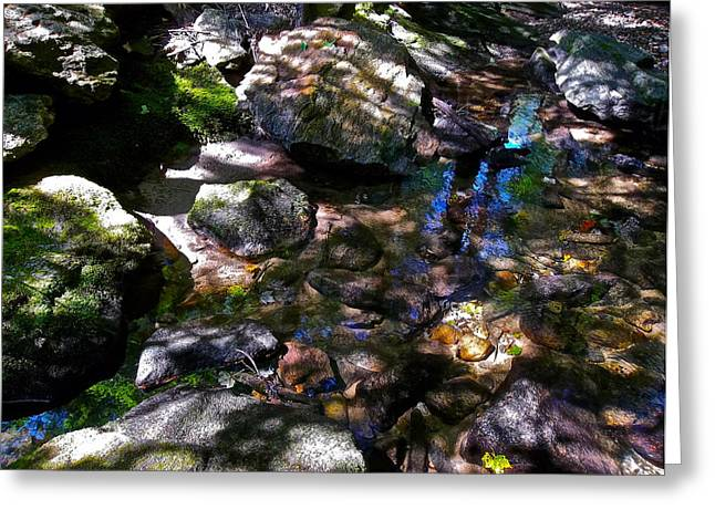 Autumn Brook 88 Greeting Card