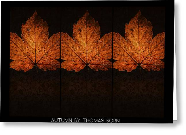 Autumn By Thomas Born Greeting Card