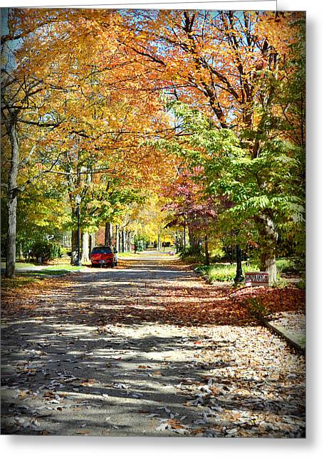 Autumn Canopy Greeting Card