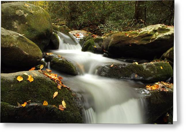 Autumn Cascades In Tennessee Greeting Card