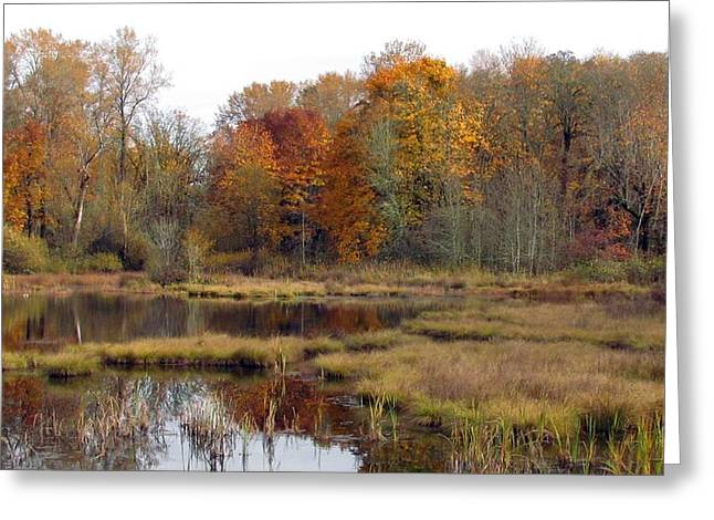Autumn Changes  Greeting Card by I'ina Van Lawick