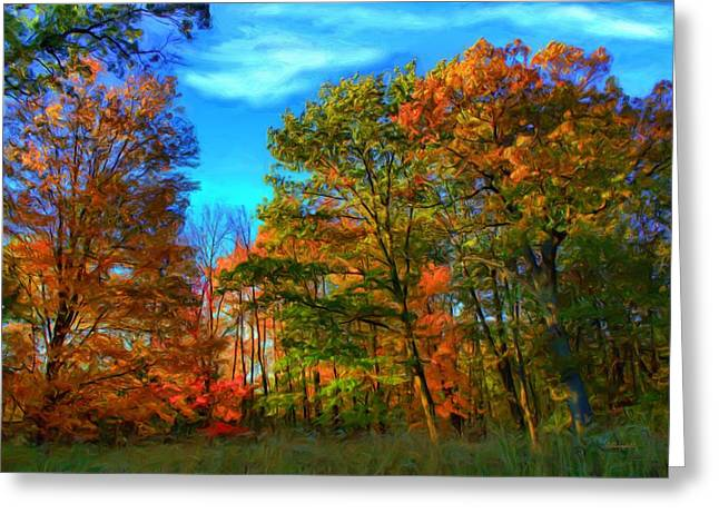 Autumn Clearing Greeting Card by Dennis Lundell