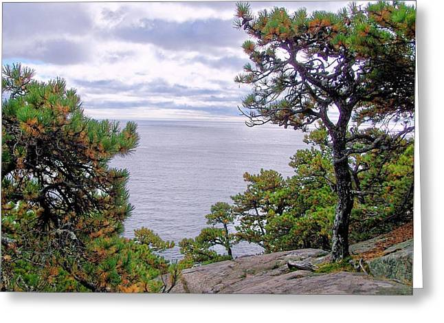 Greeting Card featuring the photograph Autumn Coast by Gene Cyr