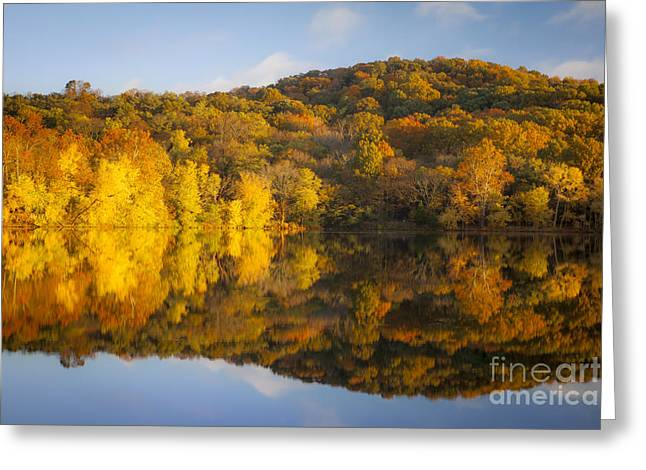 Autumn Color Greeting Card by Brian Jannsen