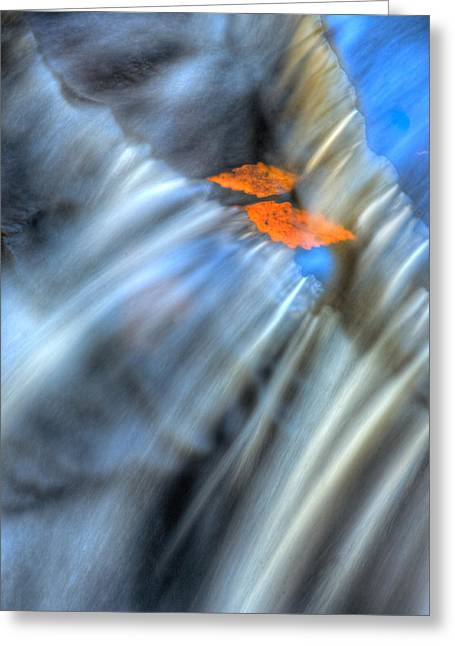 Autumn Color Caught In Time Greeting Card