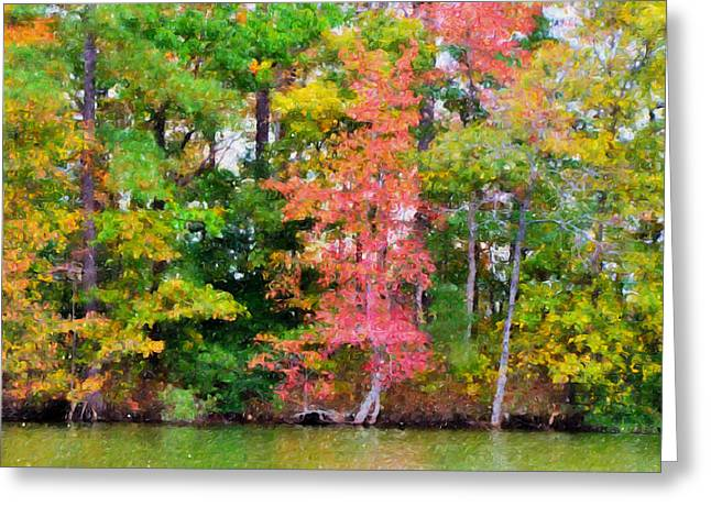 Autumn Color In Norfolk Botanical Garden  5 Greeting Card