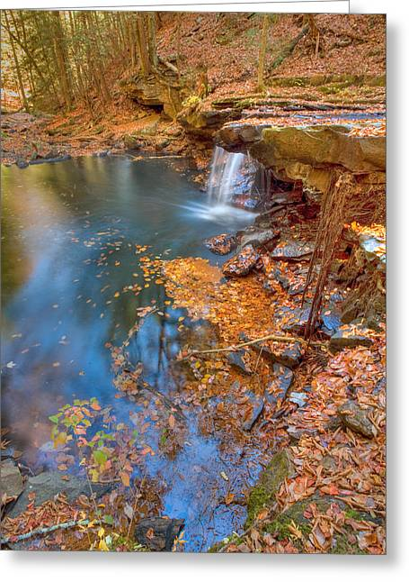 Autumn Color In Pond Greeting Card