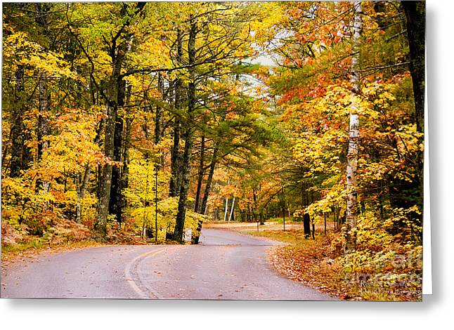 Greeting Card featuring the photograph Autumn Colors - Colorful Fall Leaves Wisconsin - II by David Perry Lawrence