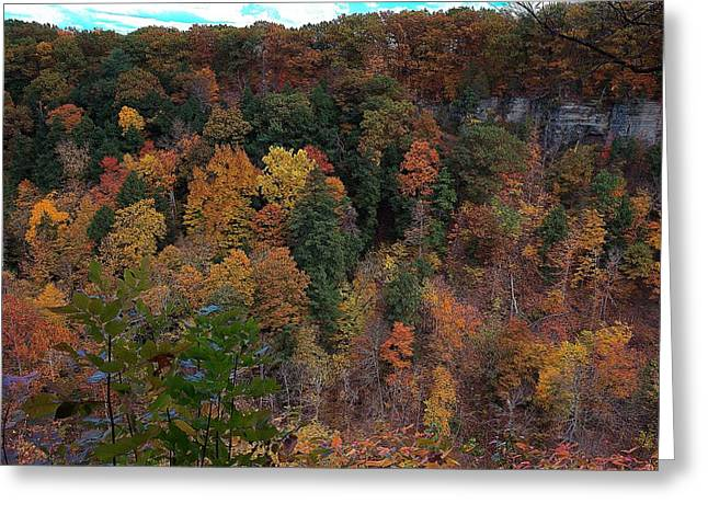 Greeting Card featuring the photograph Autumn Colors In Taughannock State Park Ithaca New York by Paul Ge