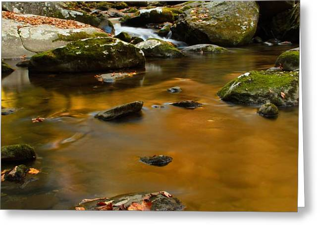 Autumn Colors On Little River Greeting Card by Dan Sproul