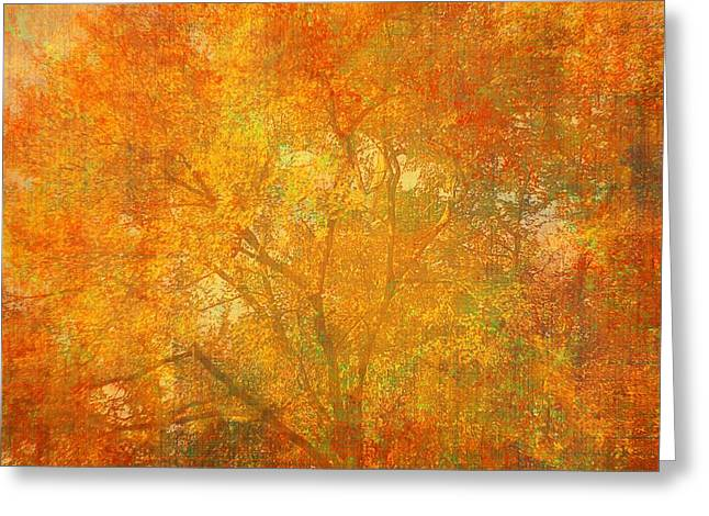 Autumn Colors Greeting Card by Suzanne Powers