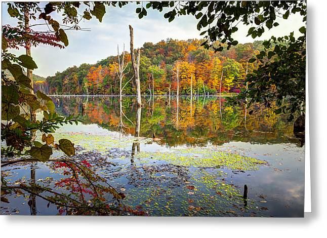 Autumn Colors Through The Trees On Monksville Reservoir - Long Pond Ironworks State Park Greeting Card