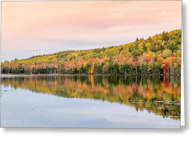 Greeting Card featuring the photograph Autumn Colors  by Trace Kittrell