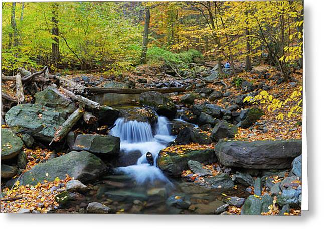 Autumn Creek Panorama With Yellow Maple Trees Greeting Card
