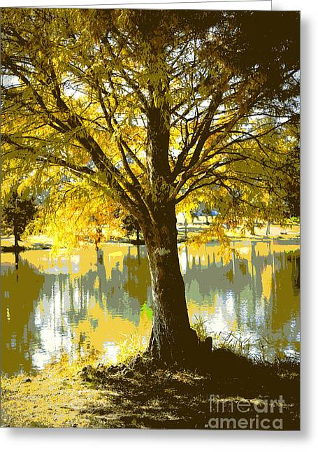 Autumn Cypress Reflection Greeting Card