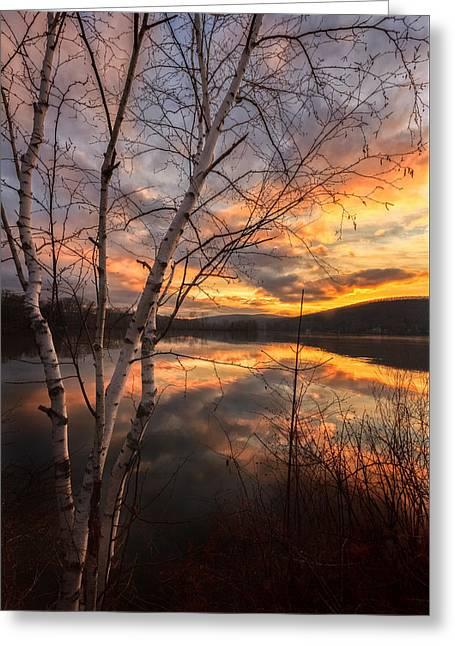 Autumn Dawn Greeting Card by Bill Wakeley