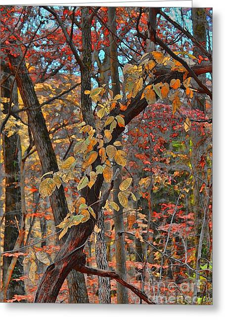 Autumn Day Greeting Card by Jeff Breiman