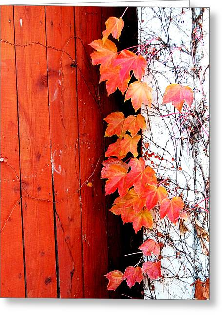 Autumn Days Greeting Card