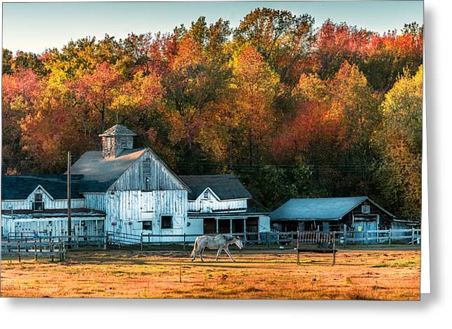 Autumn Days Greeting Card