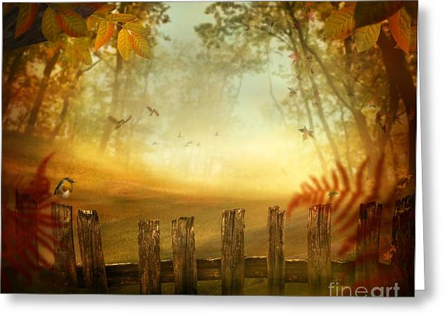 Autumn Design - Forest With Wood Fence Greeting Card by Mythja  Photography