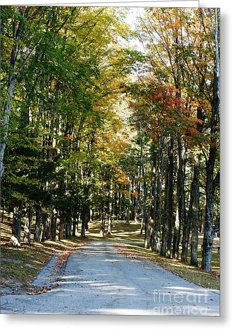 Autumn Drive Greeting Card by Barbara Bardzik