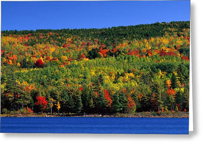 Autumn Eagle Lake, Acadia National Greeting Card by Panoramic Images