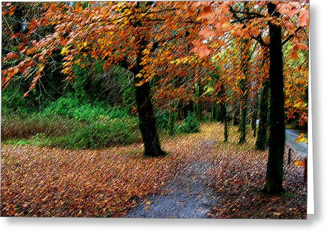 Autumn Entrance To Muckross House Killarney Greeting Card