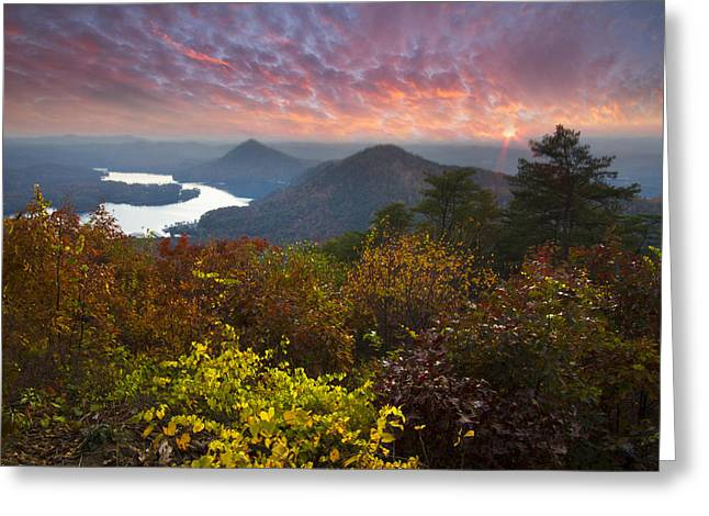 Autumn Evening Star Greeting Card by Debra and Dave Vanderlaan