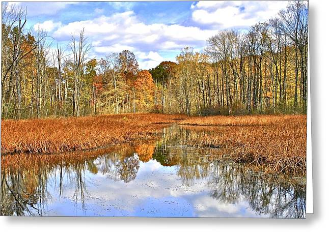 Autumn Fades Greeting Card by Frozen in Time Fine Art Photography