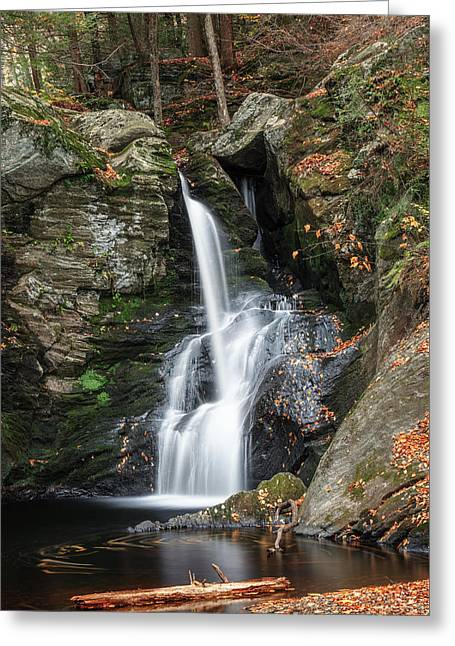 Autumn Fall Greeting Card by Bill Wakeley