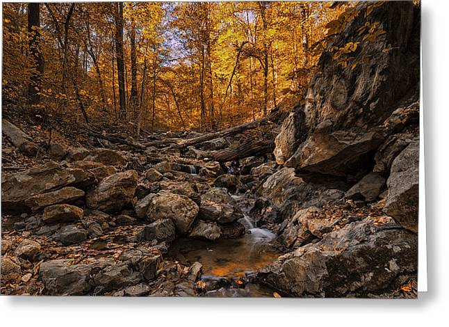 Autumn Falls Greeting Card by Edward Kreis