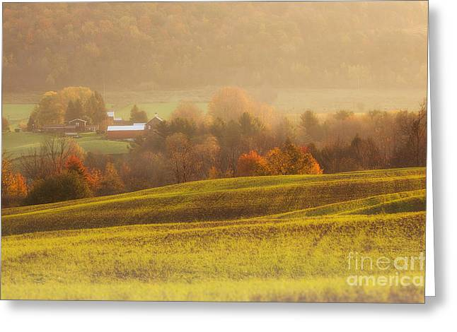 Autumn Fields Greeting Card by Michele Steffey
