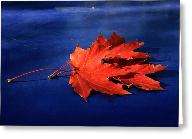 Autumn Fire Greeting Card by Leena Pekkalainen