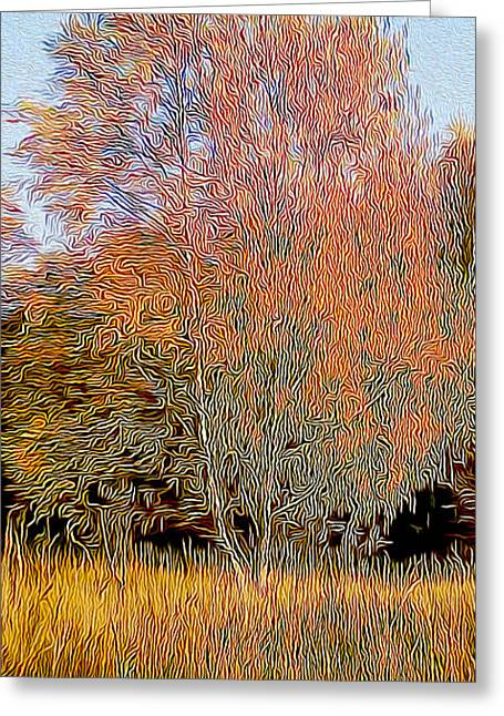 Autumn Fires Greeting Card by Jim Pavelle