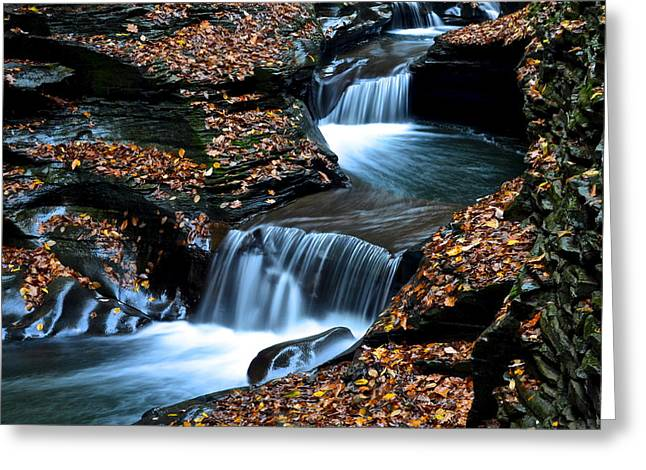 Autumn Flows Forth Greeting Card by Frozen in Time Fine Art Photography