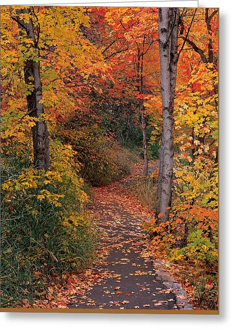 Autumn Foot Path Greeting Card by Leland D Howard