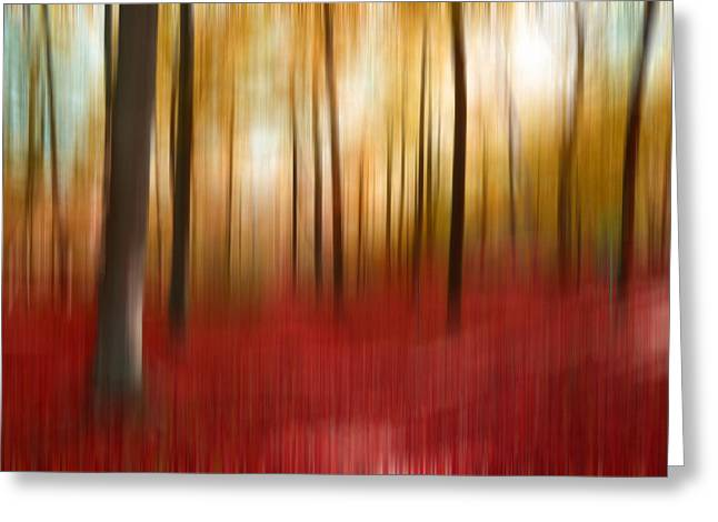 Autumn Forest Greeting Card by Angela Bruno