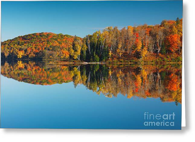 Autumn Forest Reflecting In Still Water Greeting Card