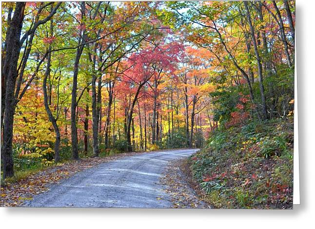 Autumn Forest Trail Greeting Card by Bob Jackson