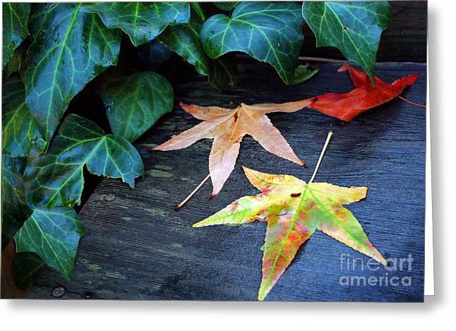 Autumn Garden 1 Greeting Card