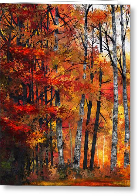 Autumn Glory I Greeting Card by Dale Jackson