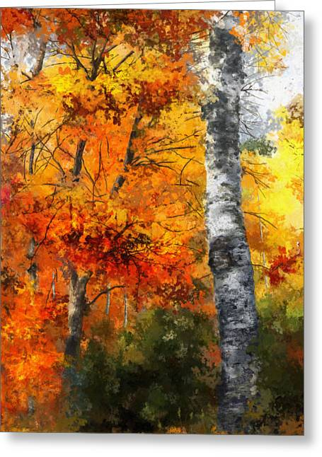 Autumn Glory II Greeting Card by Dale Jackson