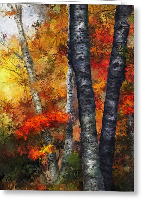 Autumn Glory IIi Greeting Card by Dale Jackson