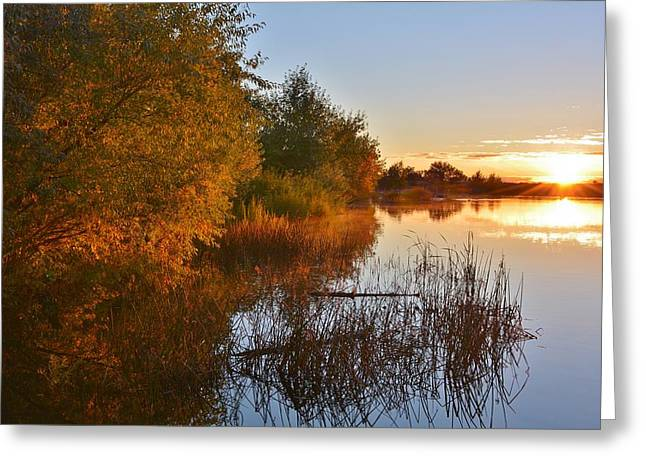 Autumn Glow At The Lake Greeting Card