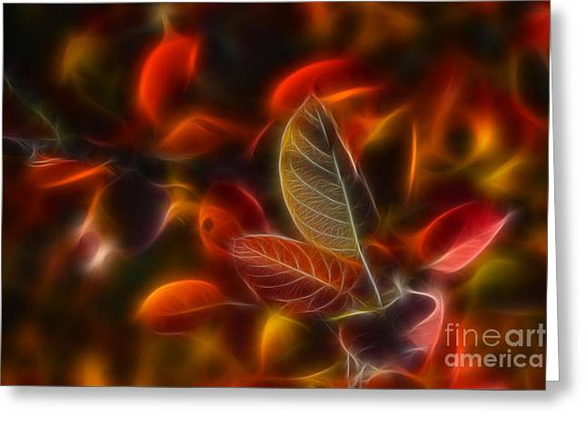 Autumn Glow Greeting Card