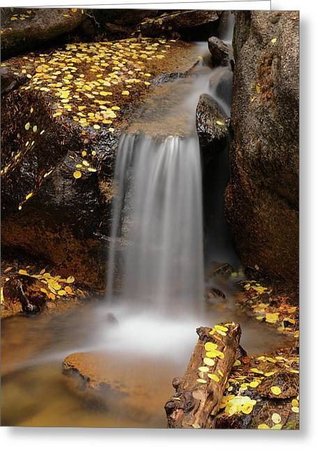 Autumn Gold And Waterfall Greeting Card