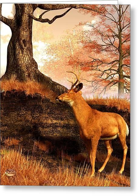 Autumn Hart Greeting Card by Daniel Eskridge