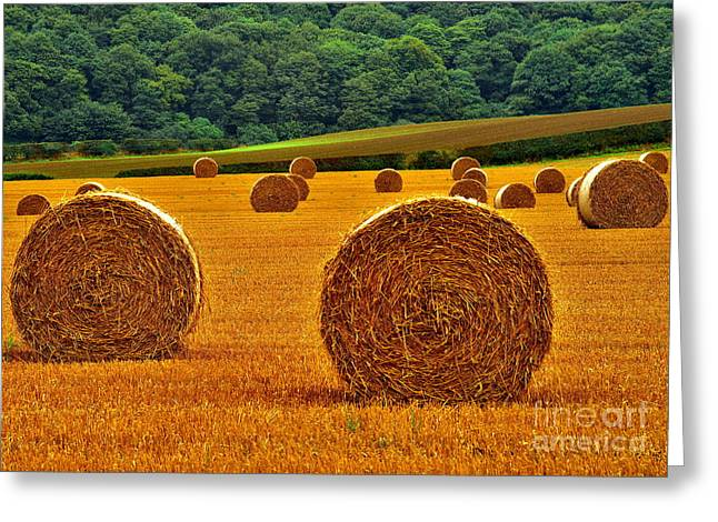 Autumn Hay Bales Greeting Card